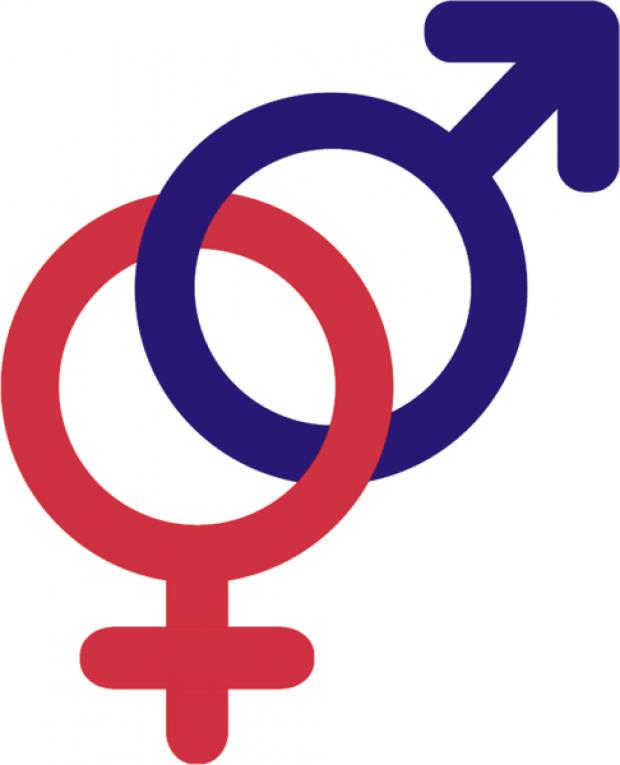 Fighting For Gender The Bridge News